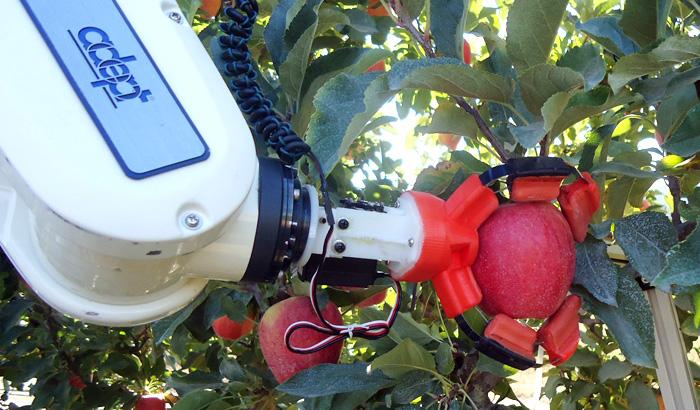 apple picker robot